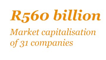 Market capitalisation of 31 companies